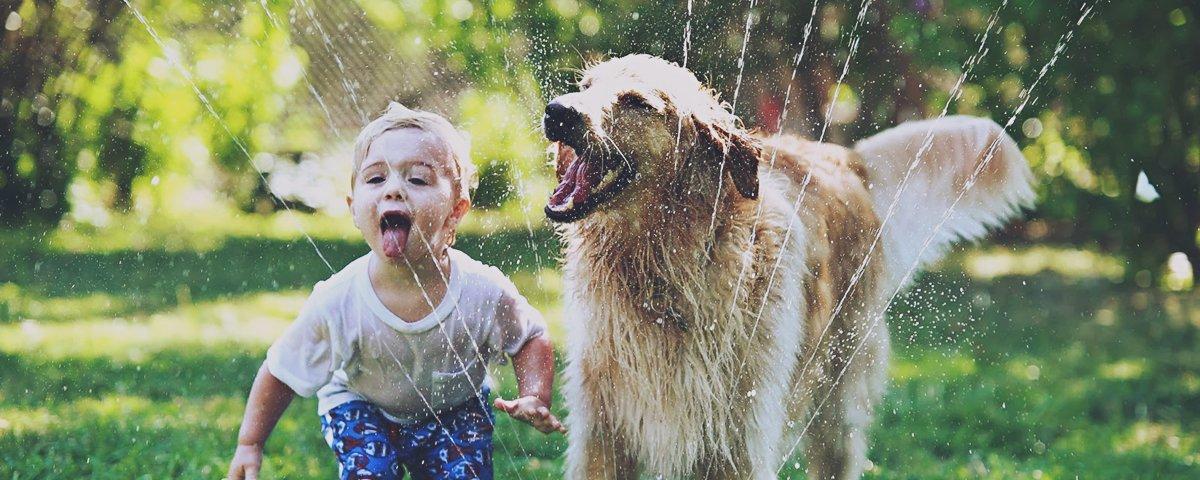 13 imagens de crianças e animais que vão te fazer sorrir instantaneamente