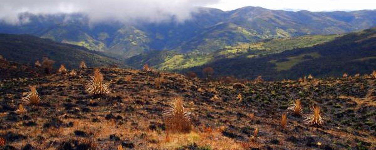 Cordilheira dos Andes: a fascinante mais longa cadeia de montanhas do mundo