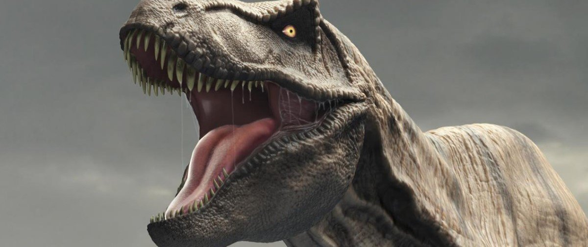 Lambidas de tiranossauro? Elas só seriam possíveis nos filmes mesmo!
