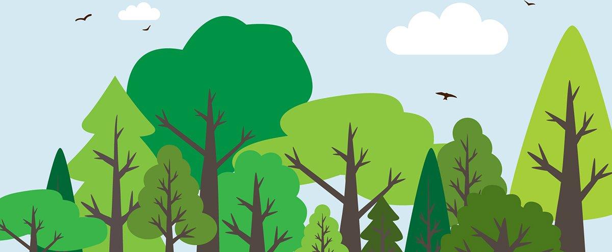 6 maneiras simples de preservar a natureza