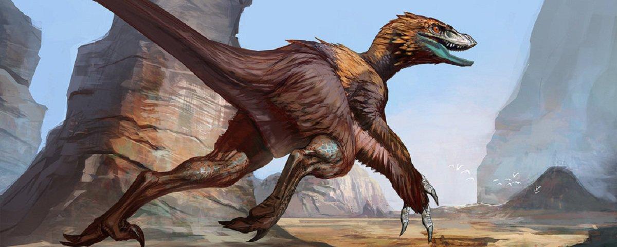 De acordo com cientistas, dinossauros evoluíram para aves