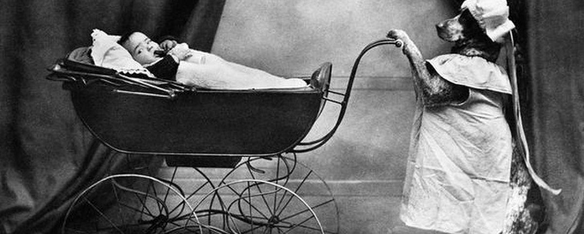 13 fotos de época que mostram que os humanos nunca tiveram muita sanidade