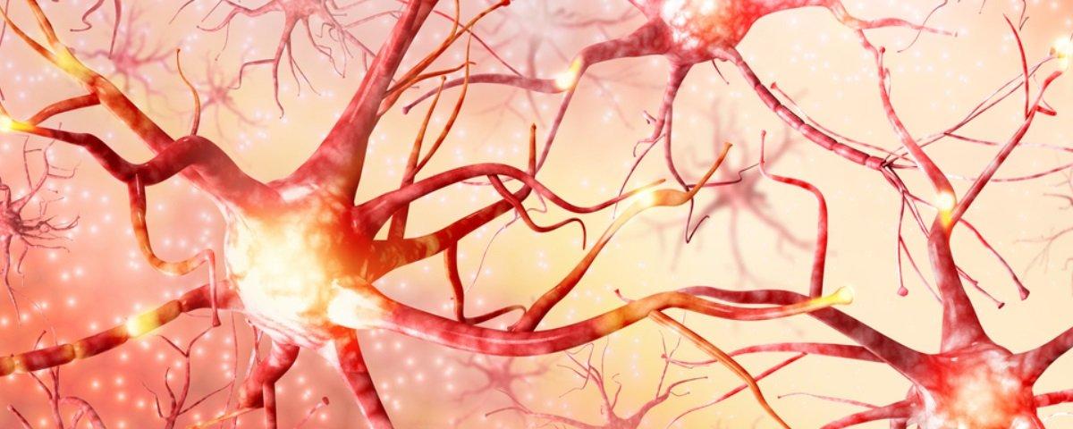 Cuidar da saúde do seu cérebro é mais fácil do que você imagina