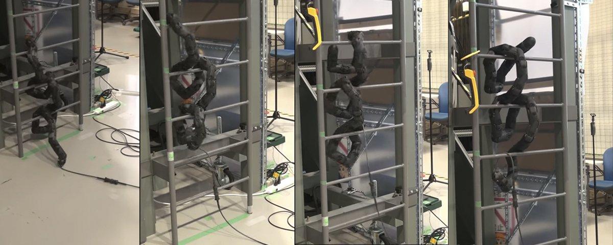 Eita! Cobra robótica japonesa é capaz até mesmo de subir escadas