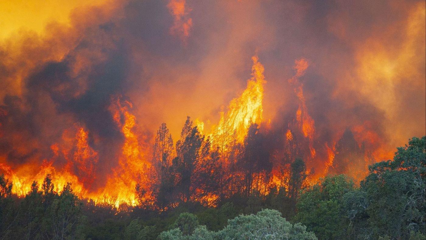 Incêndio na Califórnia vira meio de atrair audiência no Instagram
