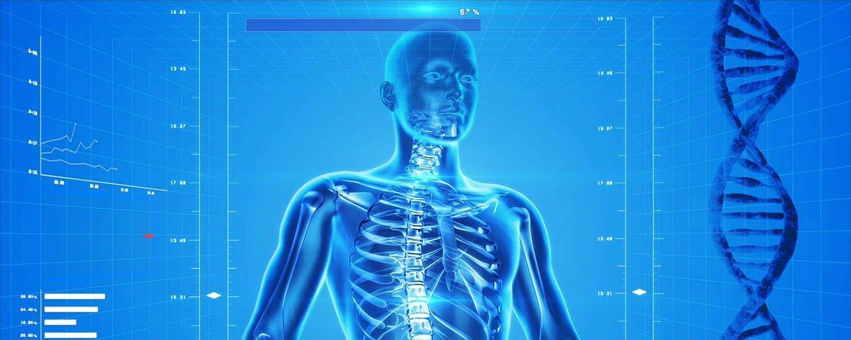 Você tem estas 7 partes do corpo, mas talvez não saiba disso