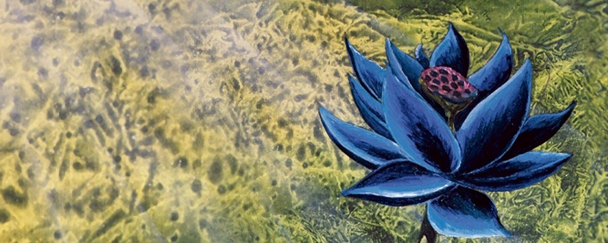 As 10 cartas mais caras de 'Magic: The Gathering'