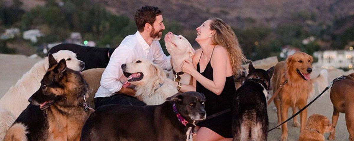 Esse cara fez o pedido de casamento perfeito para a namorada que adora cães