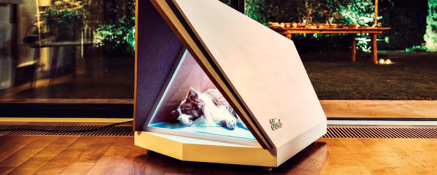 Tem Na Web - Ford cria casinha para cães que isola dos estrondos de fogos de artifício