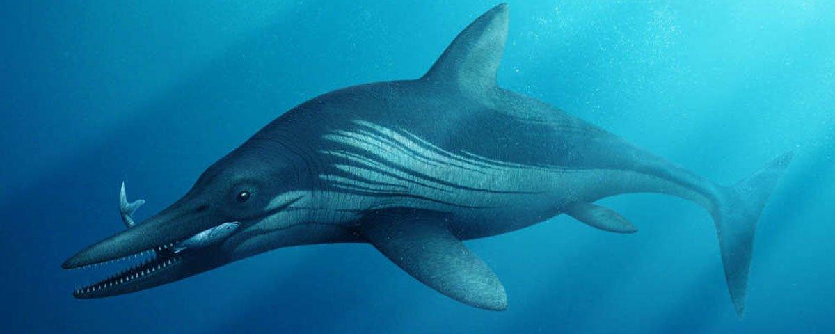 Conheça o ictiossauro, um gigante réptil marinho da era mesozoica