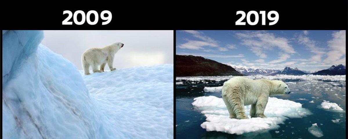 #10YearChallenge: Desafio dos 10 Anos vira arma na luta pelo meio ambiente