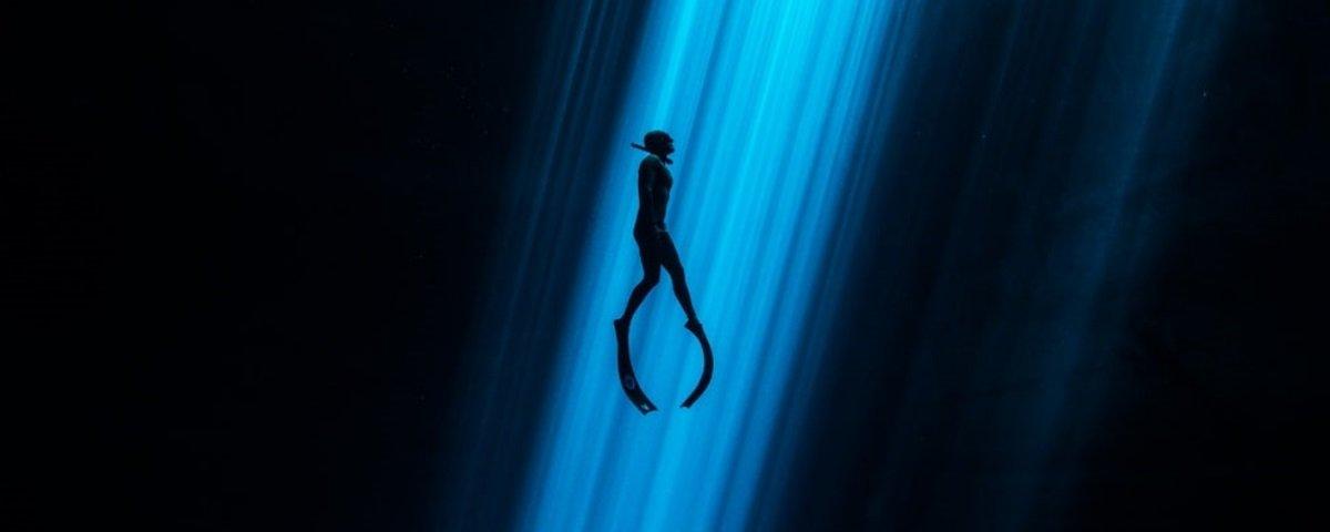 Confira 18 imagens espetaculares de um concurso de fotografia aquática