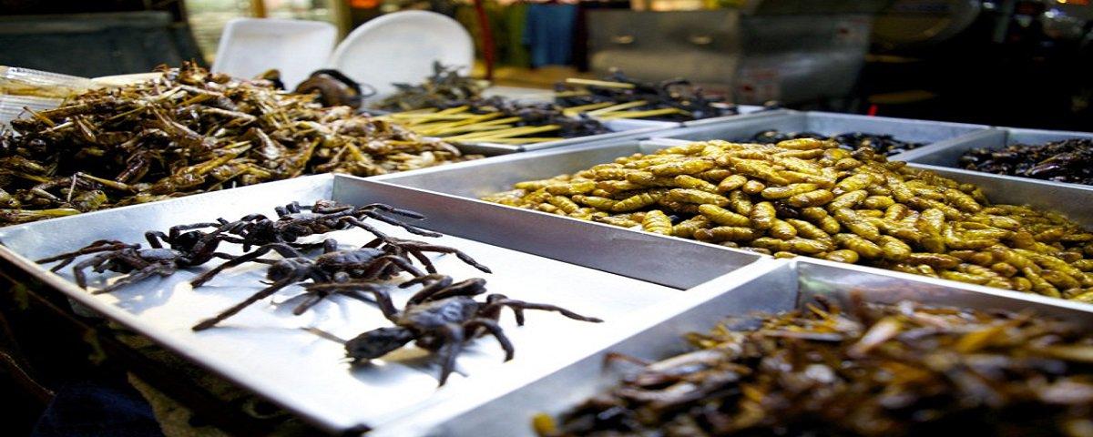 As 9 comidas mais estranhas e fascinantes da Tailândia