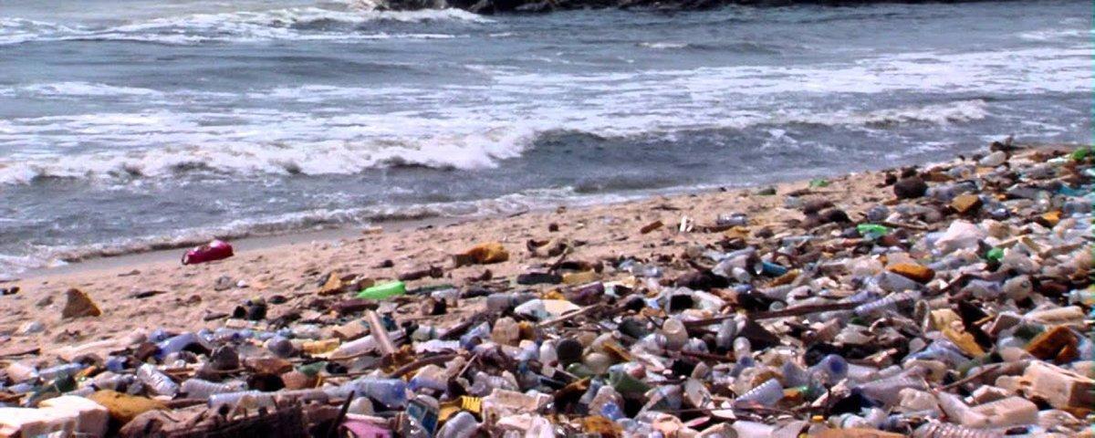 Relatório ambiental mostra como estamos em perigo e quanto tempo temos