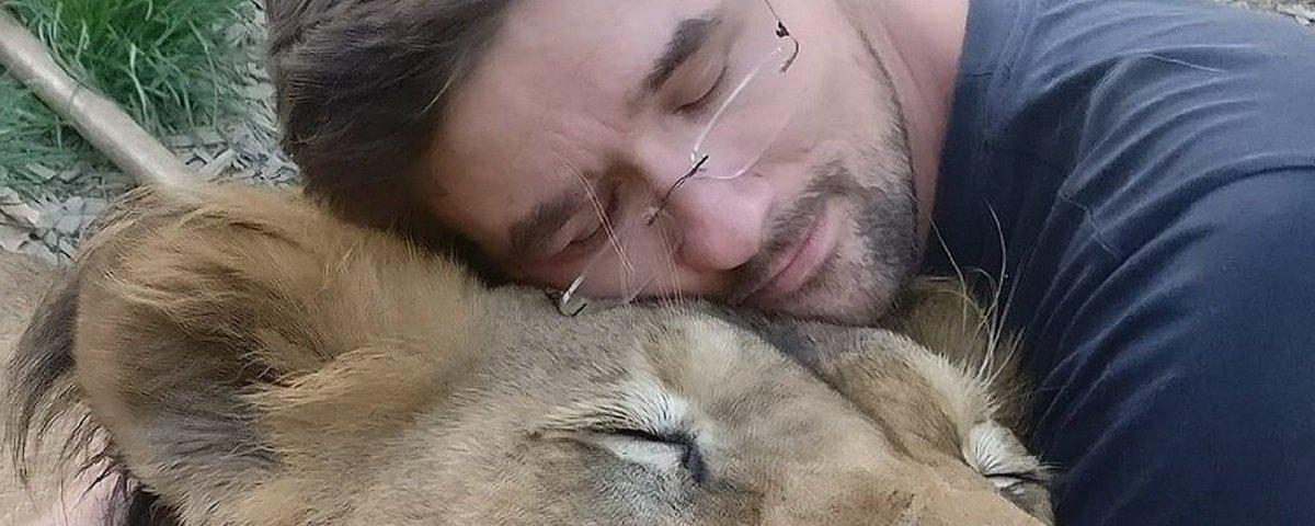 Leões são abatidos depois de um deles matar o dono no quintal de casa