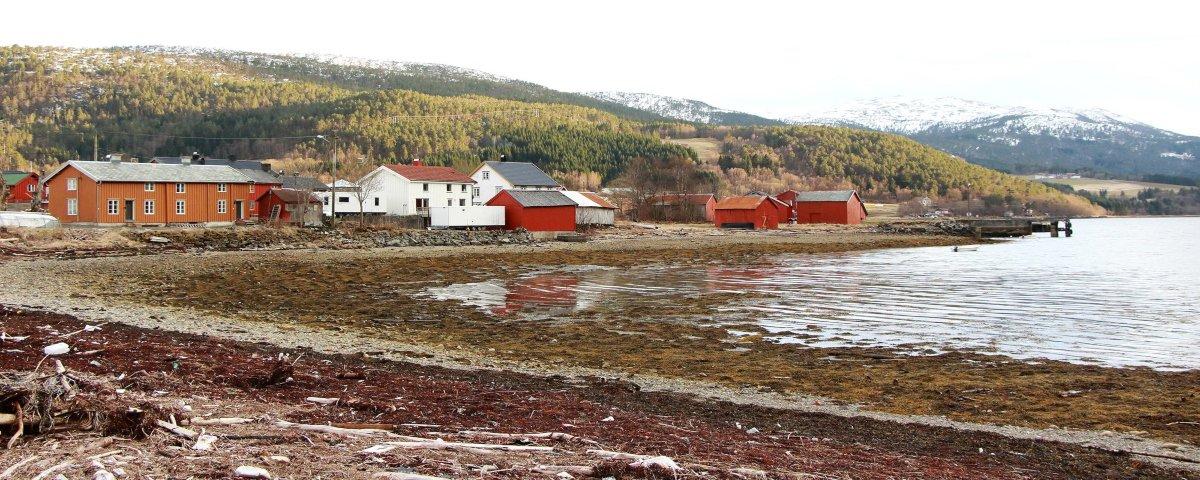 Pesquisadores descobrem cemitério viking na Noruega