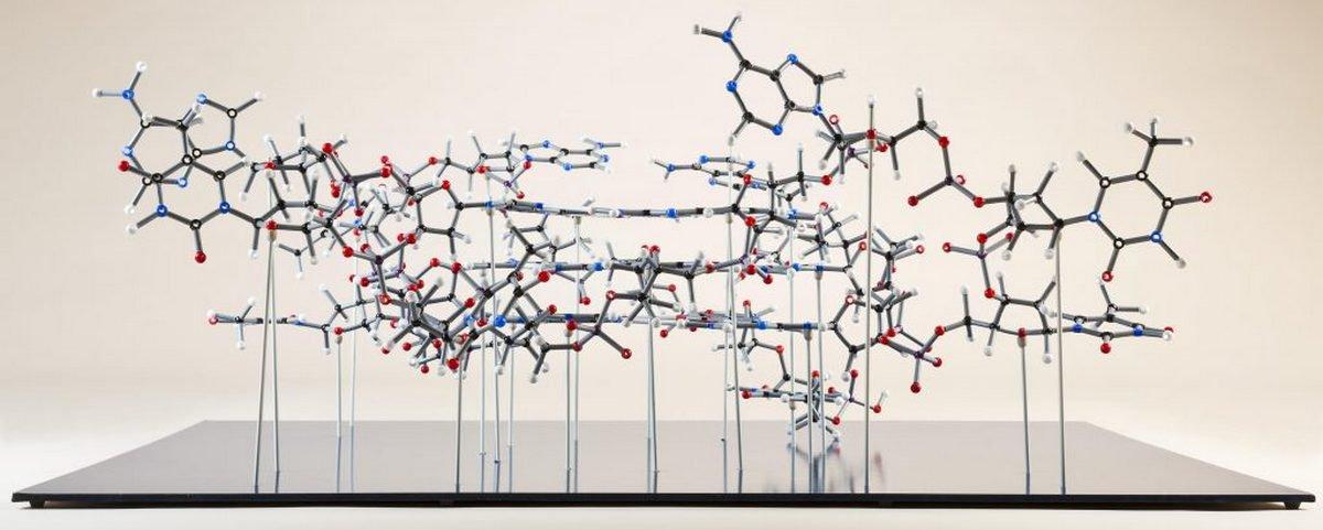 DNA de cadeia quádrupla abre caminho para terapia contra o câncer