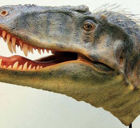 Nova espécie de tiranossauro é descoberta nos Estados Unidos
