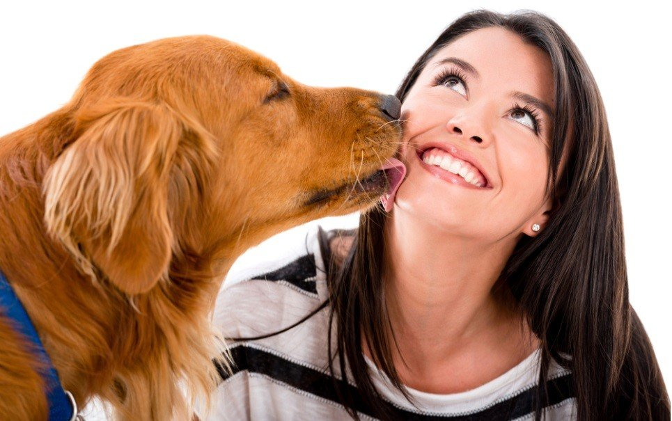 Amor animal: mulheres podem amar mais seus bichos do que seus maridos