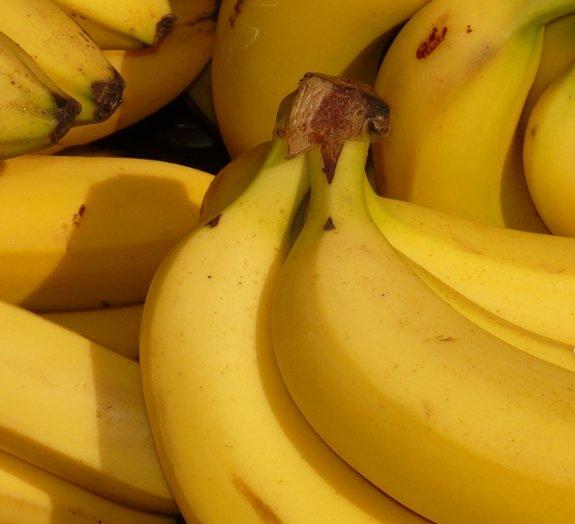 Será que vamos testemunhar um 'bananapocalípse'?