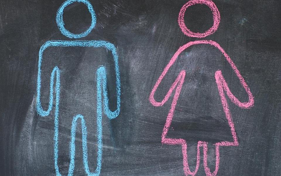 Estudo aponta que homens e mulheres possuem muitas semelhanças psicológicas