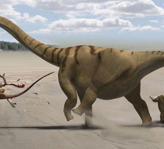Queda de meteoritos deu fim aos dinossauros há 66 milhões de anos