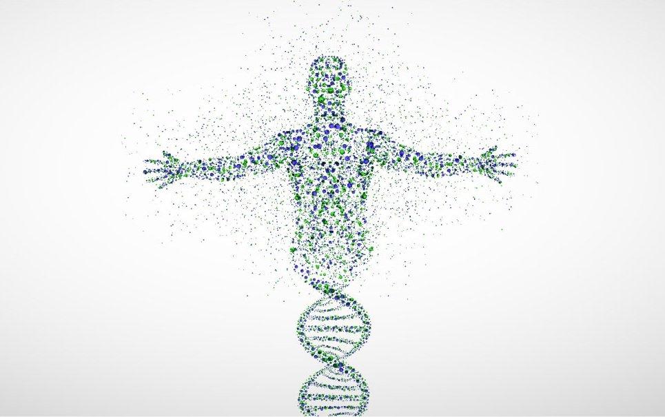 Teste de DNA revela que o 'pai' de todos os humanos viveu há 340 mil anos