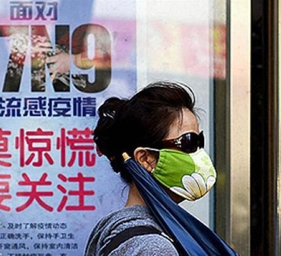 Gripe aviária: H7N9 é uma das variantes mais letais do vírus