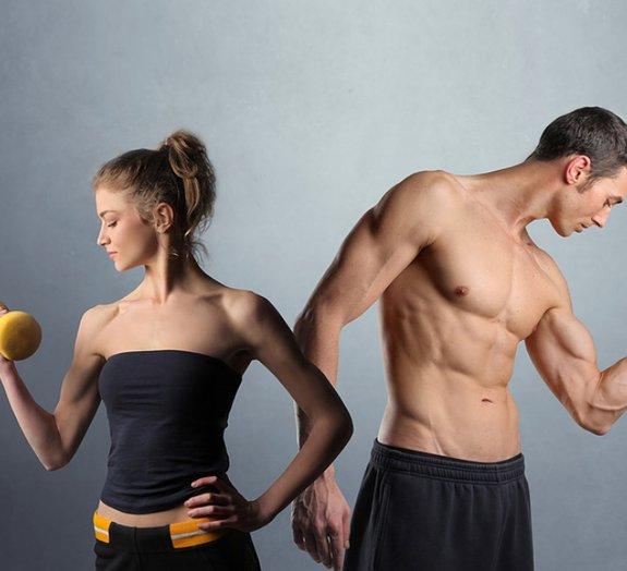 Quais são os músculos mais fortes do nosso corpo?