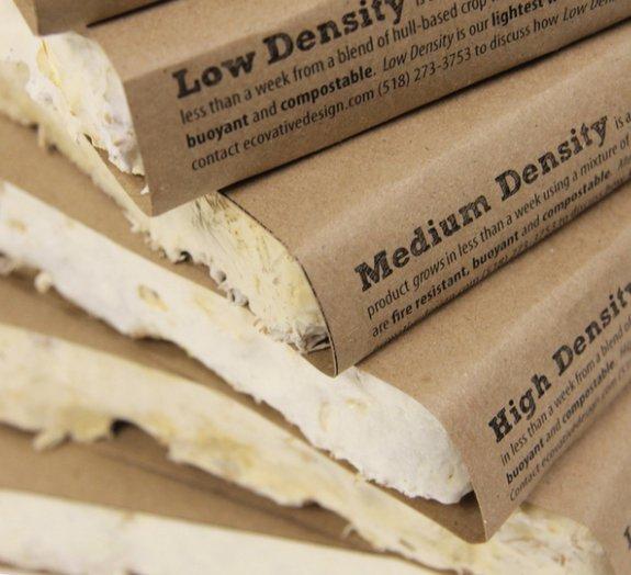 Supermaterial feito à base de fungos pode substituir o plástico