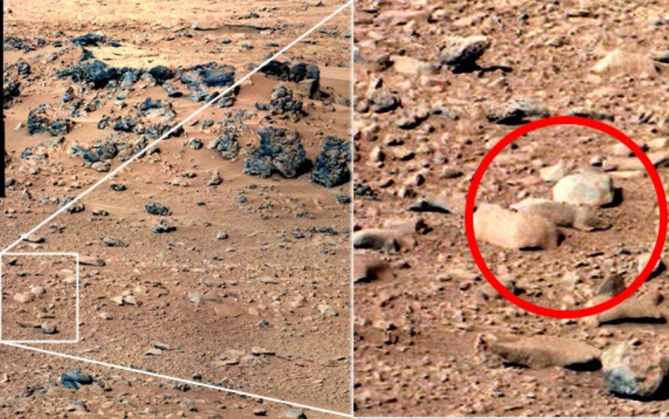 Estaria o planeta Marte infestado de... Ratinhos?