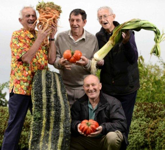 Concurso na Inglaterra elege os maiores produtos orgânicos da região