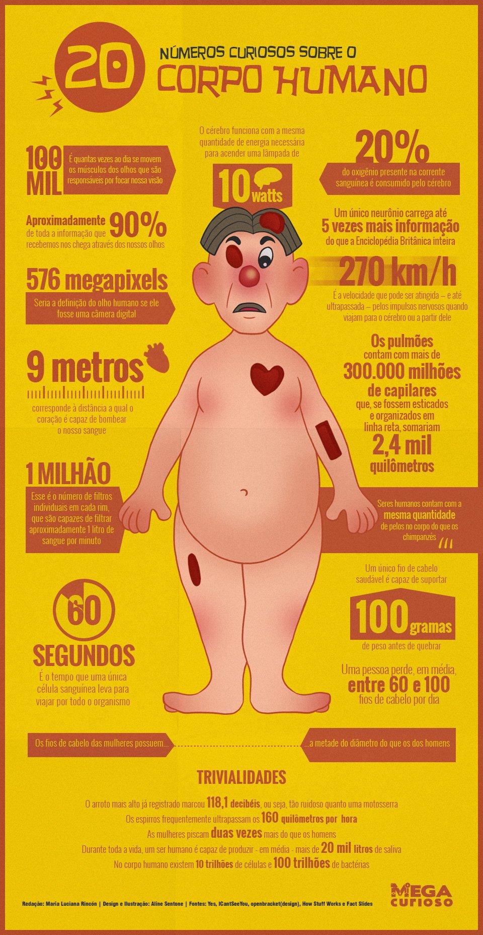 20 números curiosos sobre o funcionamento do corpo humano [infográfico]
