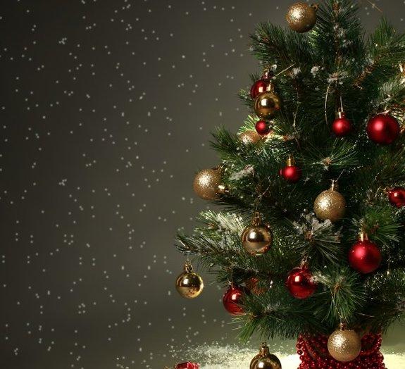 Você conhece a origem da árvore de Natal?