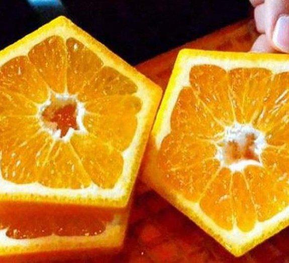 Depois das melancias quadradas, japoneses criam frutas cítricas pentagonais