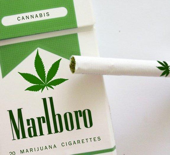 Boatos de que marca de cigarros lançaria a versão de maconha são falsos