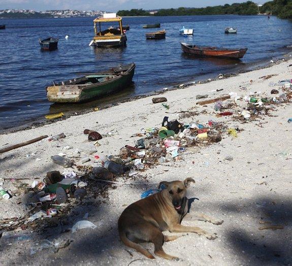 Olimpíadas no Rio: sites divulgam fotos e criticam a Baía de Guanabara