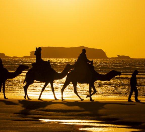 Próxima parada: Marrocos – Conheça um dos países mais diversos da África