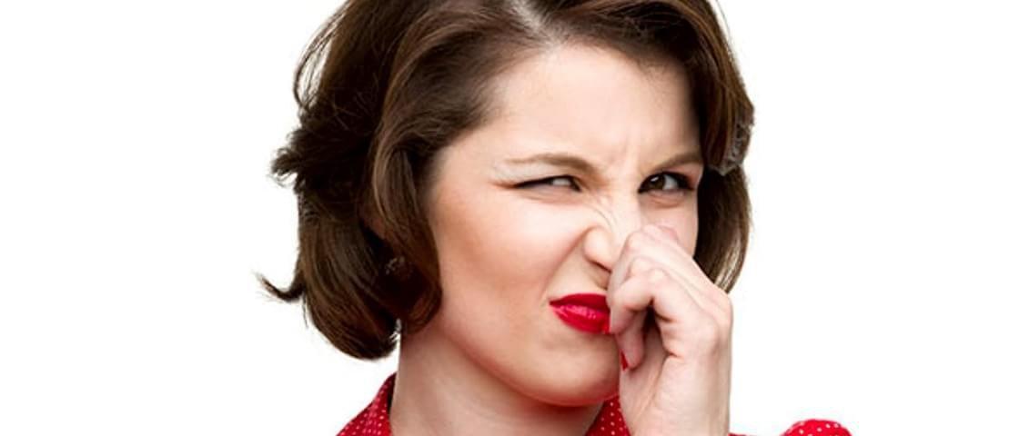 Não é só o nariz! Órgãos internos também sentem cheiros