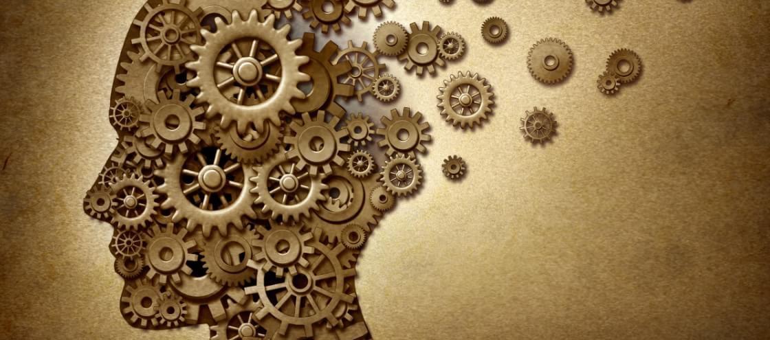 7 truques aprovados pela Ciência para manter o cérebro jovem por mais tempo
