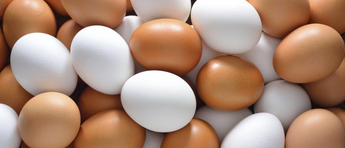 Japão cria ovo com cheiro cítrico