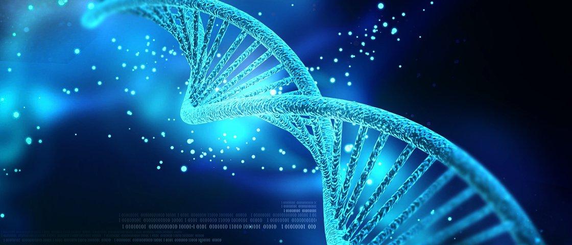 Genes humanos podem possuir DNA de outros seres vivos