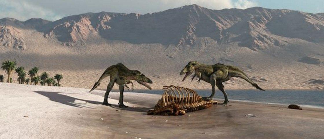 Dinossauros faziam caminhadas de lazer na praia? Estudo sugere que sim