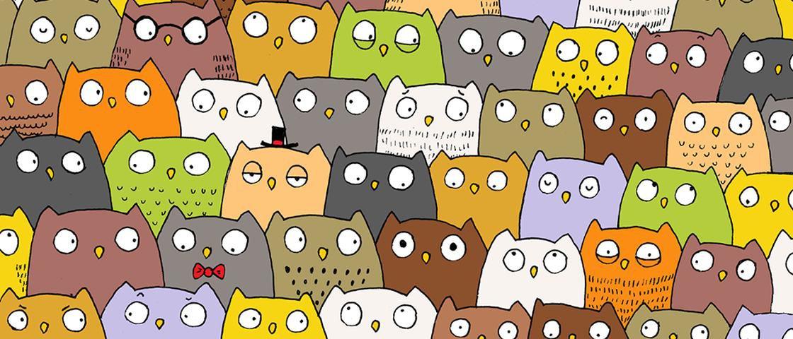 Encontre o gato nesta imagem repleta de corujas