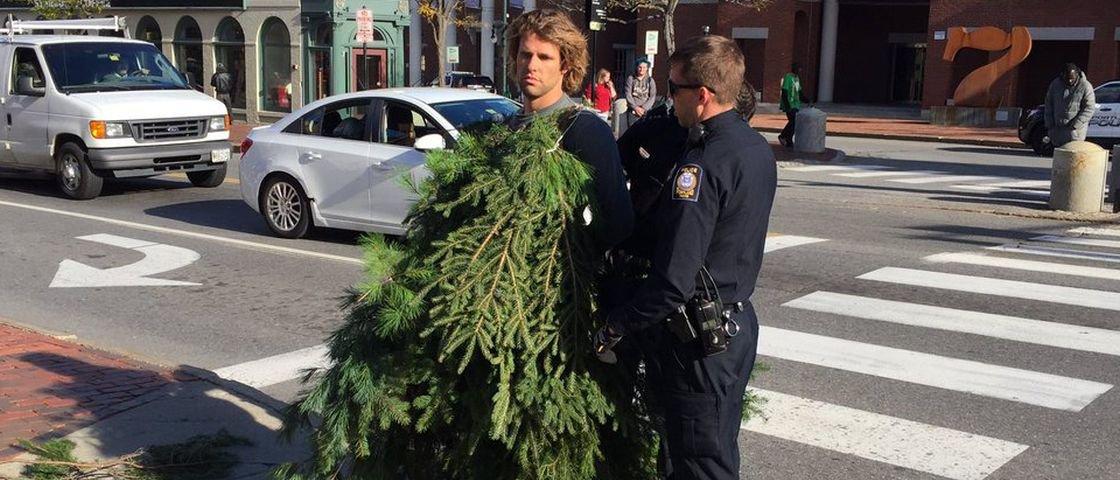 Homem é preso por se vestir de árvore e atrapalhar o trânsito