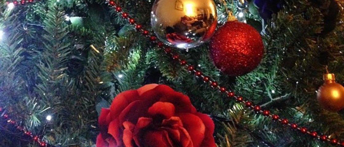 Já pensou em decorar sua árvore de Natal com flores?