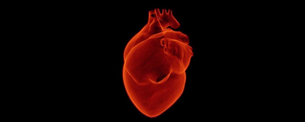 Fique esperto: 12 curiosidades relacionadas com doenças cardíacas