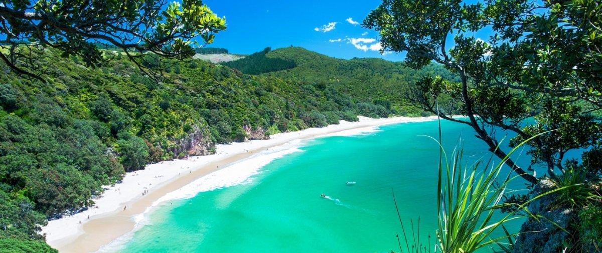 Neozelandeses podem ajudar a repor areia das praias do país bebendo cerveja