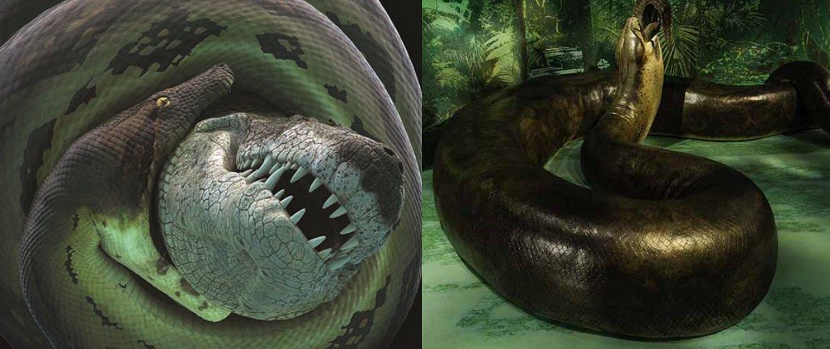 Cobra pré-histórica era maior do que ônibus escolar e devorava crocodilos