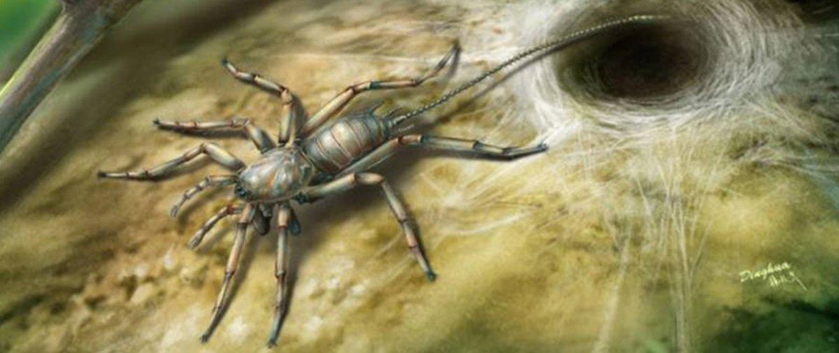 Fóssil prova que aranhas eram ainda mais horripilantes há milhões de anos